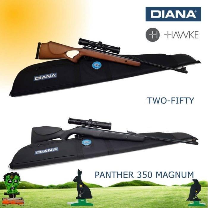 Diana Luchtbuksen aanbieding